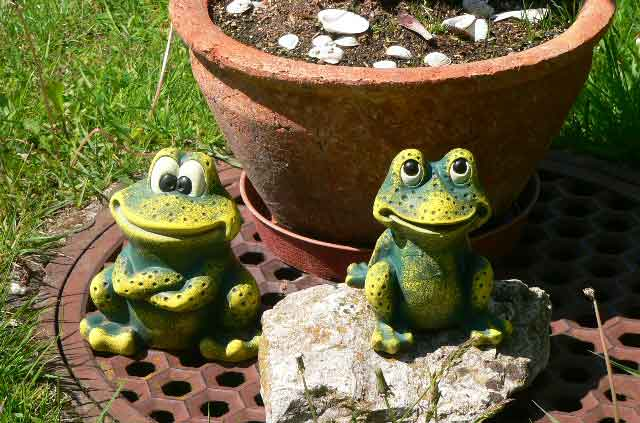 These 2 little decorative frogs in the garden look good and make most by passers smile, these items are available at most garden centers