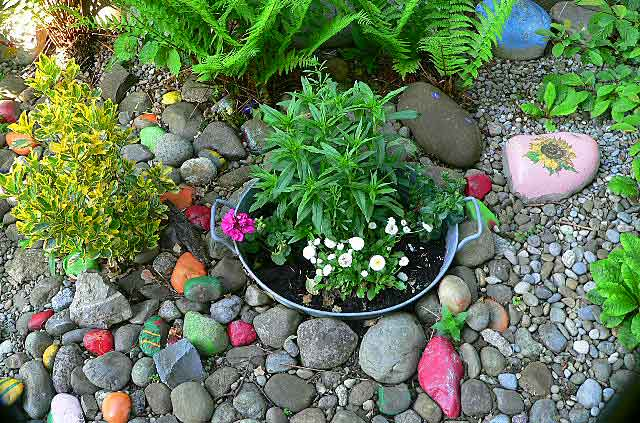 Here is a cool idea that costs almost no money and can be very decorative in your stone garden