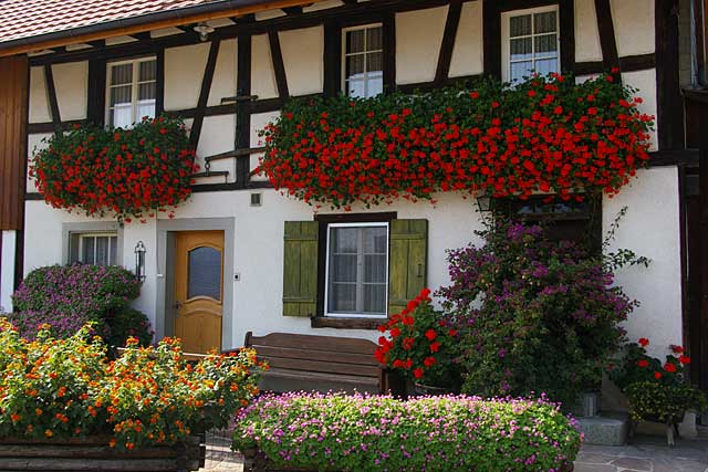 This old farm house in Switzerland is a good example of how you can decorate your house with flowers