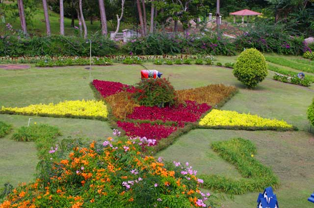 Example of a beautiful garden in star form with a variety of flowering plants, this image was taken in Boquete, Panama