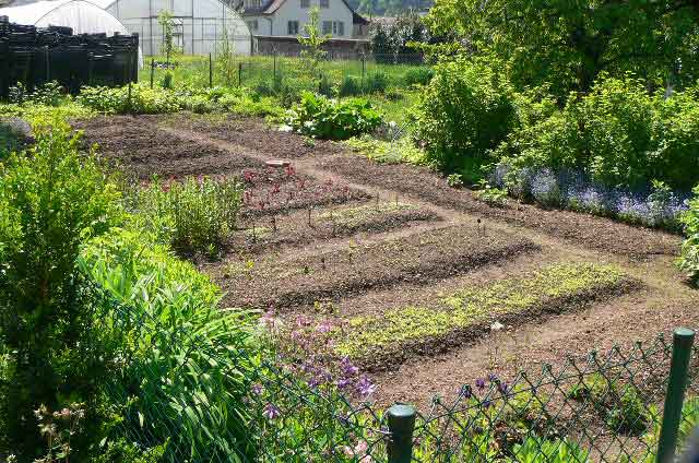 Big vegetable garden behind a country house in Switzerland, ready and set to grow some potatoes, onions, garden herbs, carrots and a variety of salads