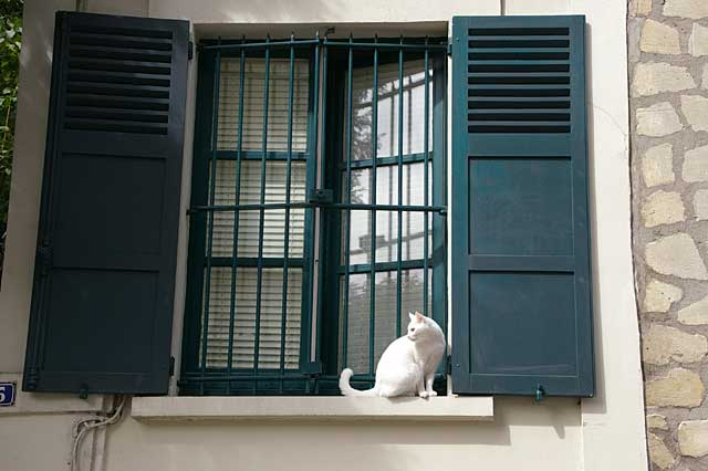 Photo of a window in a city house around the area of Montmartre in Paris France. This window has steel frames for security outside plus wooden shutters for bas weather protection.